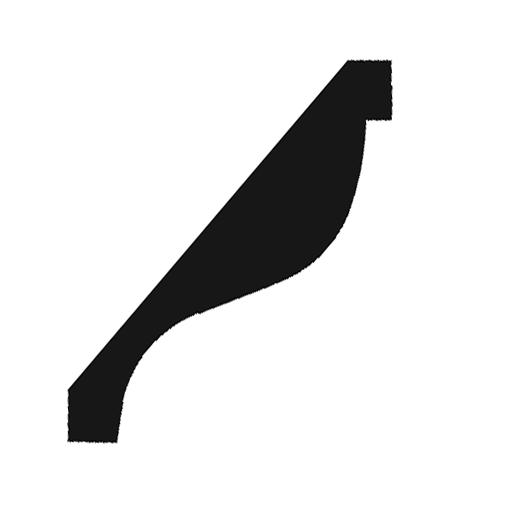 CC885 profile image 3
