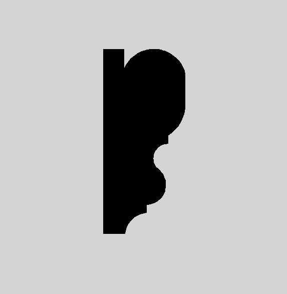 PR01 profile image 3