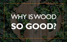 Blog Post: Our Only Renewable Resource - Wood