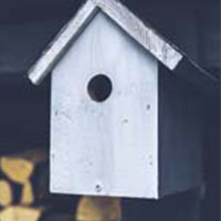 Bird tables/boxes image