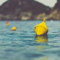 Buoyancy In Buoys image