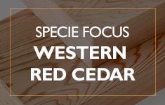 Blog Post: Specie Focus: Western Red Cedar